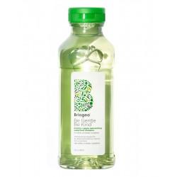Maitinantis šampūnas plaukams Briogeo Be Gentle, Be Kind Repleneshing Shampoo 369ml