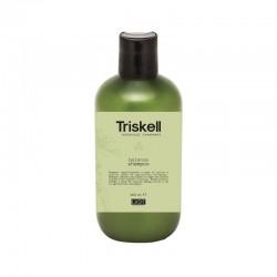 Balansuojantis šampūnas Triskell Balance Shampoo