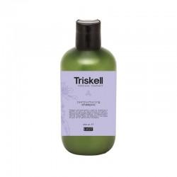 Atkuriamasis plaukų šampūnas Triskell Restructuring Shampoo
