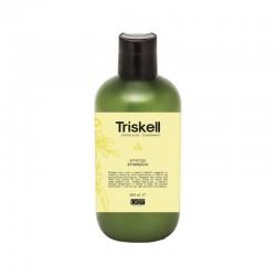 Energizuojantis šampūnas Triskell Energy Shampoo