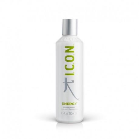Detoksikuojantis šampūnas Energy 250 ml
