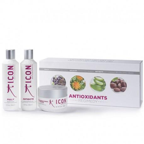Plaukus maitinantis rinkinys ICON Antioxidants