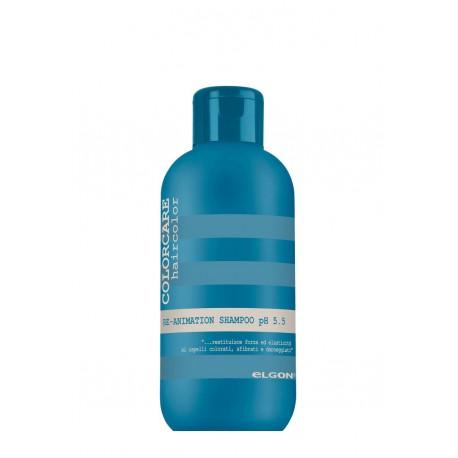 Re-animation shampoo 300 ml.