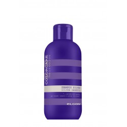 Silver shampoo 300 ml.