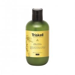 Giliai atkuriantis kondicionierius su hialurono rūgštimi Triskell Botanical Treatment Deep Repair Conditioner 300ml