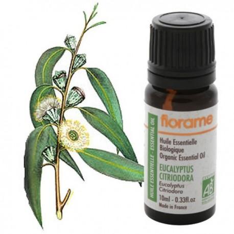 Citrinkvapių eukaliptų eterinis aliejus 10 ml
