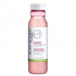 Atkuriamasis plaukų šampūnas Biolage Raw Recover Shampoo 325ml